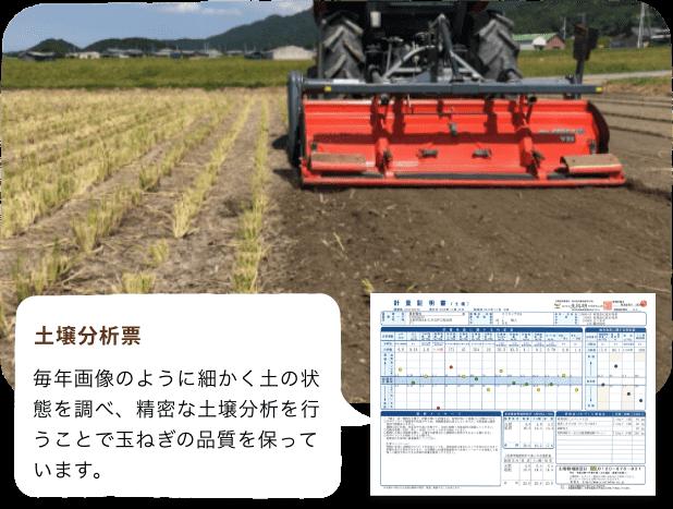 土壌分析表